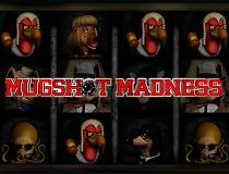 Игровой слот Безумие Преступников - играть онлайн